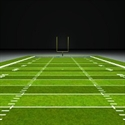 Picture of Football Field Rental